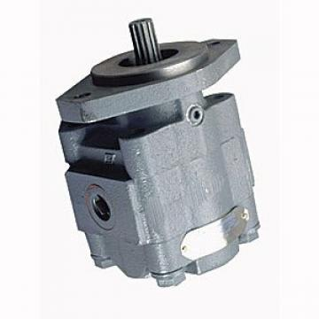 Nabtesco GM18VL-J-39/53 Hydraulic Final Drive Motor