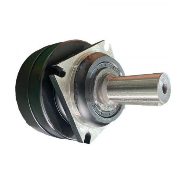 Dynapac CC422 Reman Hydraulic Final Drive Motor #3 image