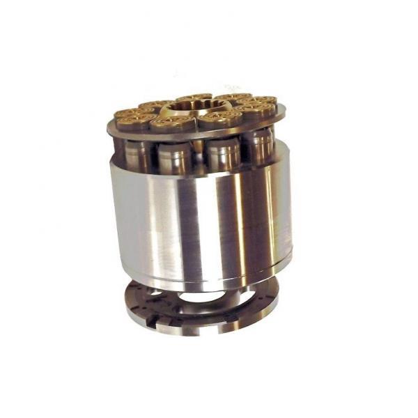 Pel Job EB252 Hydraulic Final Drive Motor #1 image