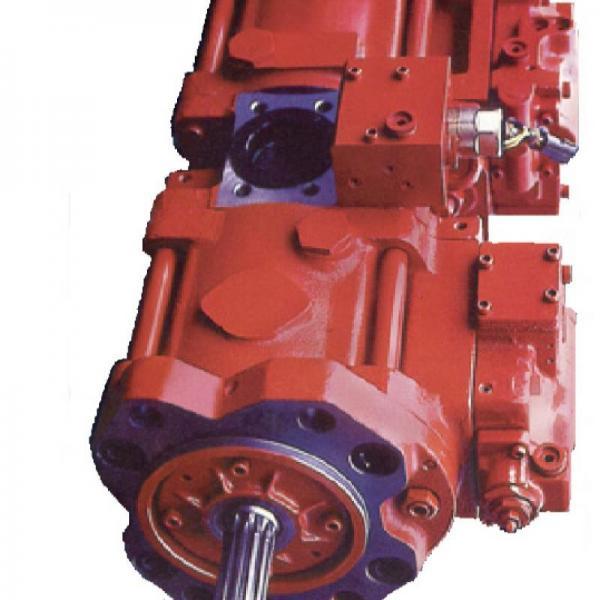 Dynapac CC422 Reman Hydraulic Final Drive Motor #1 image